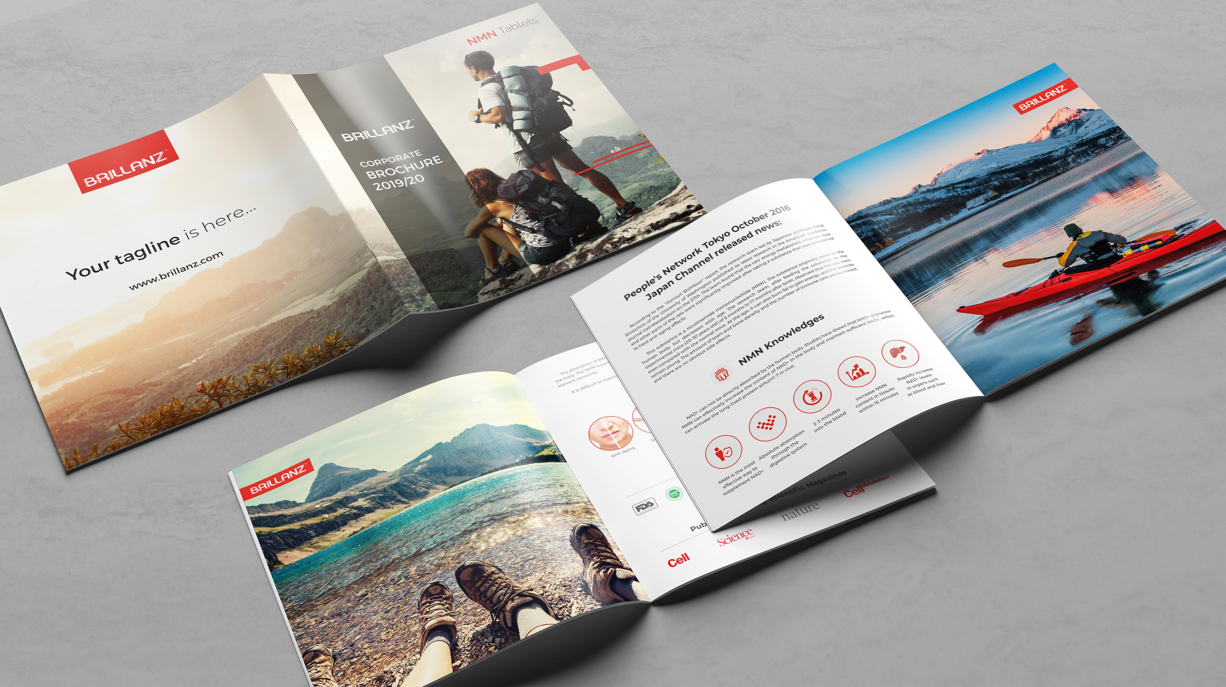 Find Out About No.1 Booklet Design in 2021   Branding Agency Print Graphics